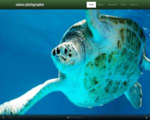 Natuur fotograaf WordPress Thema