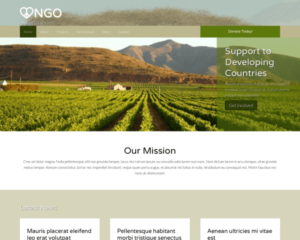 NGO WordPress Thema
