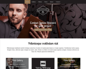 Performer WordPress Thema