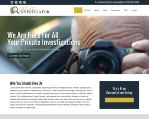 Prive detective WordPress Thema