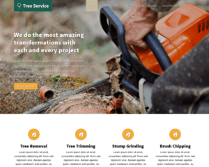 Boomspecialist WordPress Thema